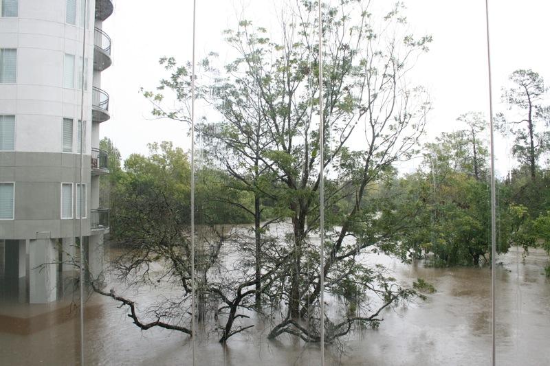 Amazonas i Houston
